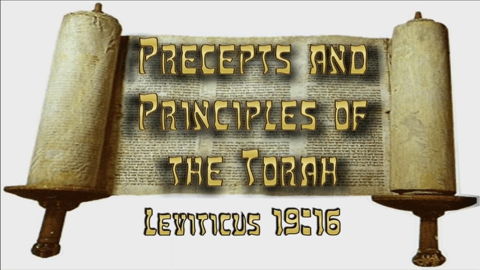Precepts & Principles of the Torah – Lev. 19:16
