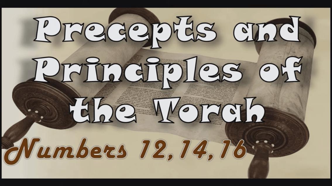 Precepts & Principles of the Torah – Numbers 12, 14, 16